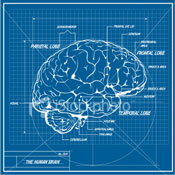 image of mind blueprint